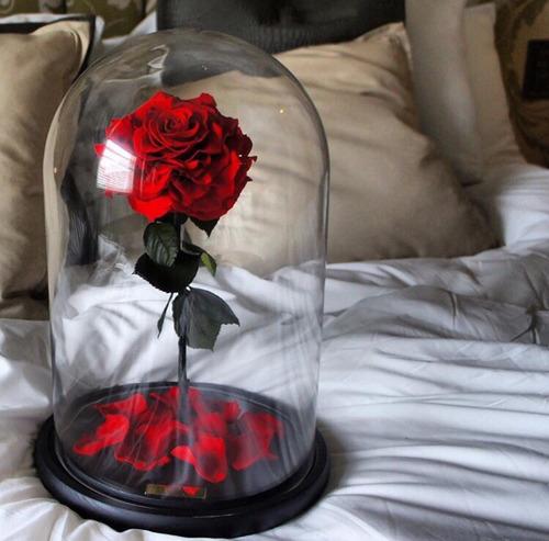 rose-bed-tumbrel