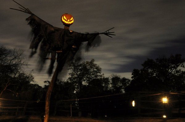 scary-halloween-decorations-front-yard-decor-ideas-creepy-scarecrow