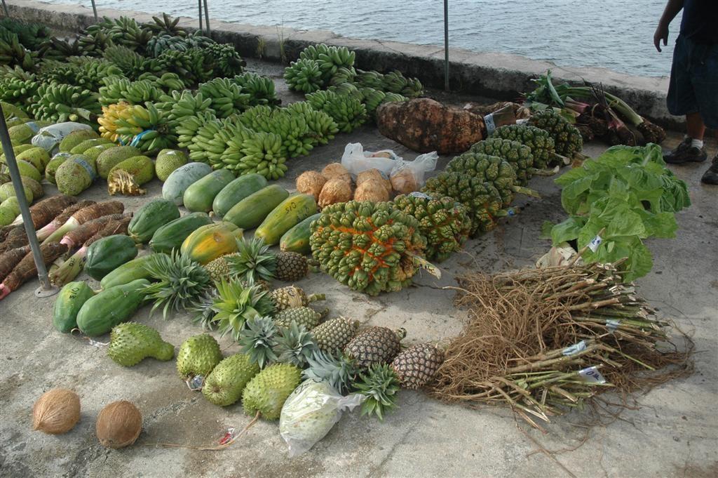 La Dieta Perfecta de la Isla Kitava