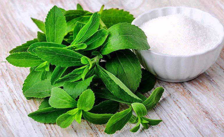 La Stevia, el Edulcorante Perfecto