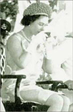Reina Isabel Bebiendo